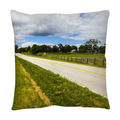 American Country Road Side View Floor Pillow Pixers