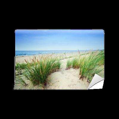 Fototapete calm strand mit d nen und gr ne gras ruhige meer pixers wir leben um zu ver ndern - Fliesenaufkleber gras ...