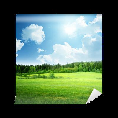 Fototapete feld von gras und perfekte himmel pixers wir leben um zu ver ndern - Fliesenaufkleber gras ...