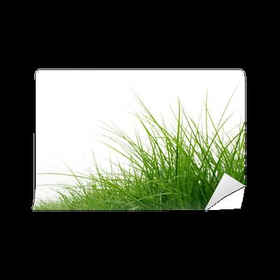 Fototapete gras halme pixers wir leben um zu ver ndern - Fliesenaufkleber gras ...