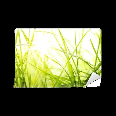 Fototapete gr nen sommer gras und sonnenlicht pixers wir leben um zu ver ndern - Fliesenaufkleber gras ...