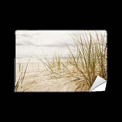 fototapete hohe gr ser am strand in der nahaufnahme. Black Bedroom Furniture Sets. Home Design Ideas