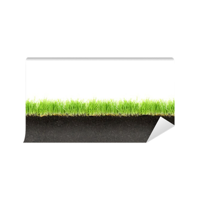 Fototapete querschnitt der erde und gras isoliert auf wei em hintergrund pixers wir leben - Fliesenaufkleber gras ...