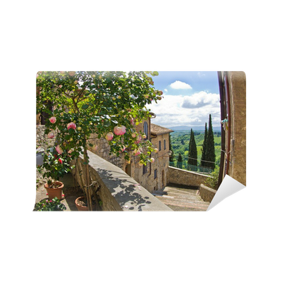fototapete rosen auf dem balkon stadtbild von san gimignano in der toskana landschaft pixers. Black Bedroom Furniture Sets. Home Design Ideas