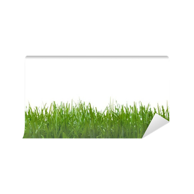 Fototapete texturen gras pixers wir leben um zu ver ndern - Fliesenaufkleber gras ...