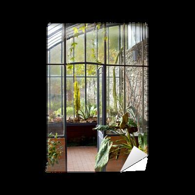 Fototapete wintergarten gew chshaus haus interieur garten garten pixers wir leben um - Gewachshaus garten ...
