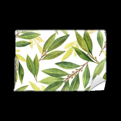 Fototapeta Winylowa Akwarela liść laurowy wzór kwiatów i liści na białym tle.