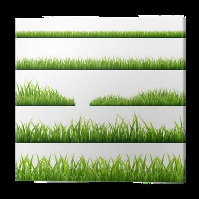 Leinwandbild gras grenzen pixers wir leben um zu ver ndern - Fliesenaufkleber gras ...