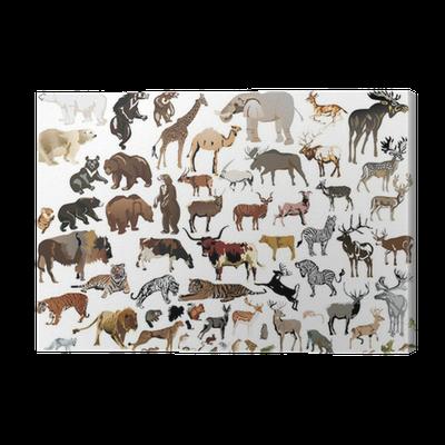 Nett Färbung In Bildern Von Tieren Ideen - Framing Malvorlagen ...