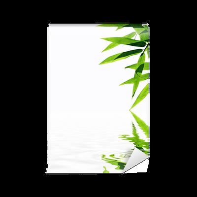 papier peint bambou avec reflet dans l 39 eau ambiance zen pixers nous vivons pour changer. Black Bedroom Furniture Sets. Home Design Ideas