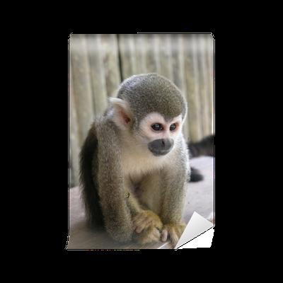 papier peint le petit singe petit singe pixers nous vivons pour changer. Black Bedroom Furniture Sets. Home Design Ideas