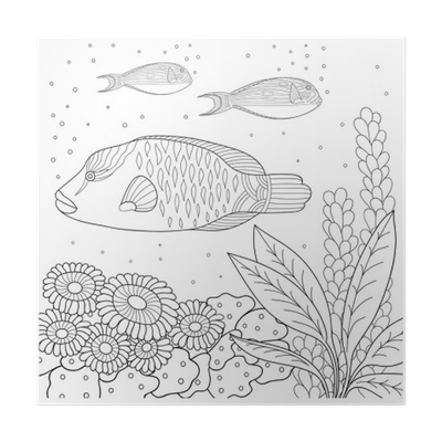 Poster Doodle Muster in schwarz und weiß. Marine-Muster für Malbuch ...