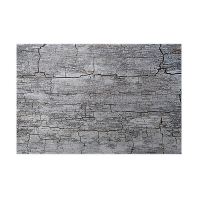 poster holz rustikal risse maserung silber grau alt antik hintergrund pixers wir leben um. Black Bedroom Furniture Sets. Home Design Ideas