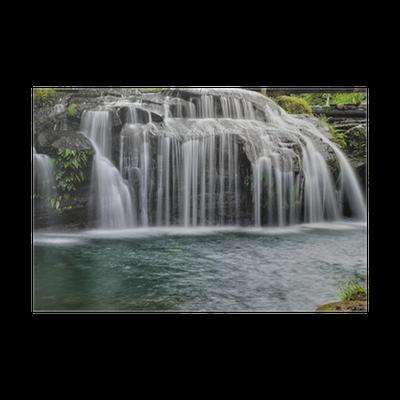 poster bos gordijn waterval pixers we leven om te veranderen