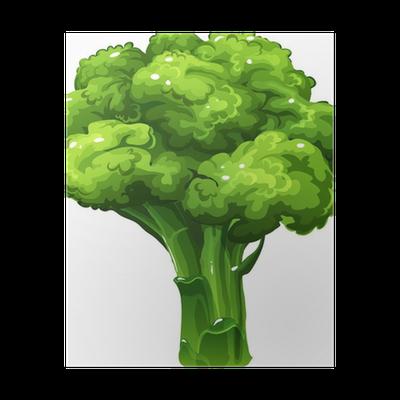 broccoli vector illustration poster pixers we live to change pixers