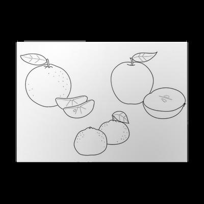 Póster Colorear Frutas: manzanas, clementinas y mandarinas • Pixers ...