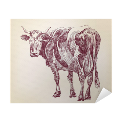 Cow Hand Drawn Vector Llustration Realistic Sketch Poster Pixers We Live To Change