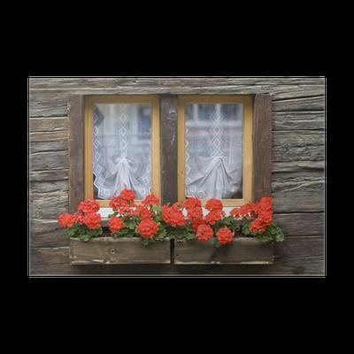 Fenster Mit Blumenkasten Poster Pixers We Live To Change