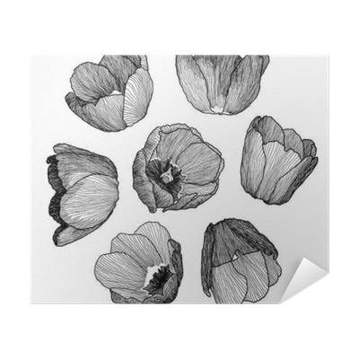 Vector Graphic Hand Drawn Ink Set Of Tulip Flowers In A Linear Style Vintage Drawn On Paper And Traced Buds Of Tulips From Different Angles For Wedding Invitation Card Design Textile Wrapping
