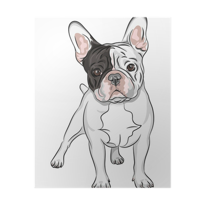 Vector Sketch Domestic Dog French Bulldog Breed Poster Pixers We Live To Change