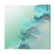 Quadro em Tela flower Orchid background