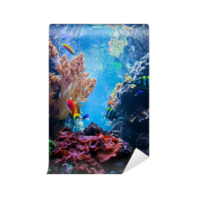 underwater scene with fish, coral reef self-adhesive wall