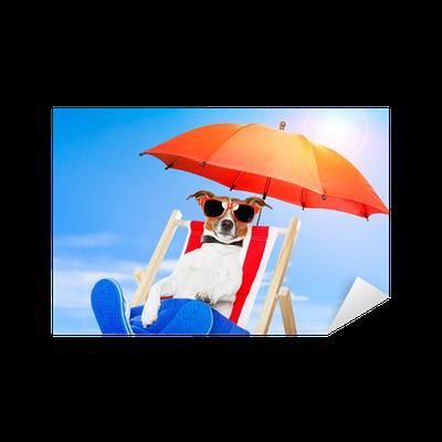 Sticker bronzer chien sur une chaise longue pixers for Chaise longue pour bronzer
