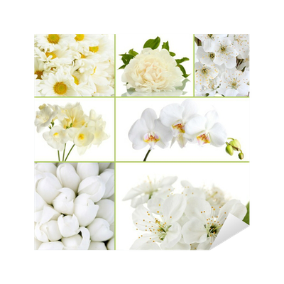 Collage of different white flowers sticker pixers we live to change mightylinksfo