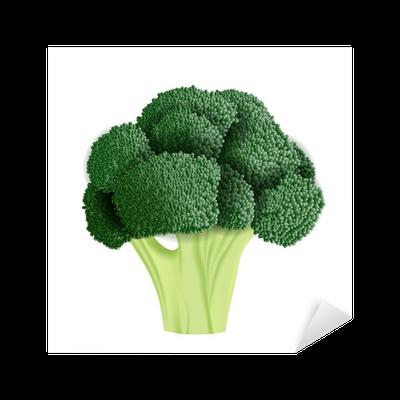 realistic broccoli vector illustration sticker pixers we live to change realistic broccoli vector illustration sticker pixers we live to change