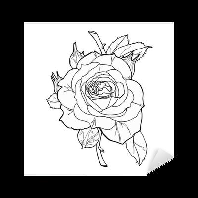 Rose Sketch Vector Sticker Pixers We Live To Change