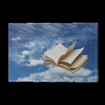 Tableau Sur Toile Livre Ouvert Sur Le Ciel Bleu Vol Pixers Nous Vivons Pour Changer
