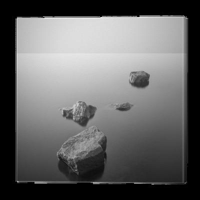 Tableau sur toile minimaliste paysage brumeux noir et for Tableau minimaliste