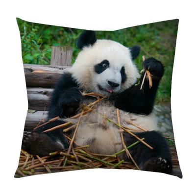 Giant Panda Eating Bamboo Tufted Floor Pillow Square