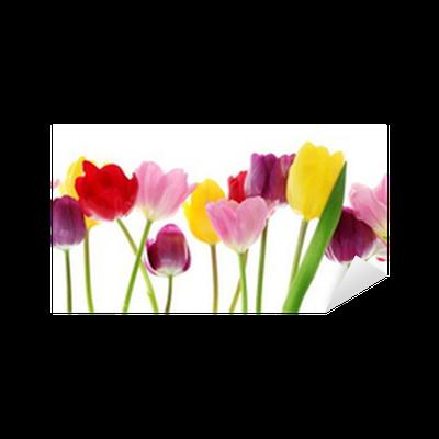 9ea48138e1d0 Vinilo Pixerstick Flores de primavera de tulipanes en una fila • Pixers® -  Vivimos para cambiar