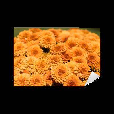Vinilo Pixerstick Flores Naranjas Horizontal Pixers Vivimos