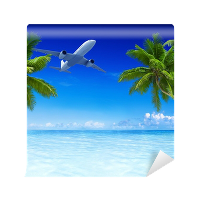 airplane flying over tropical beach wall mural • pixers
