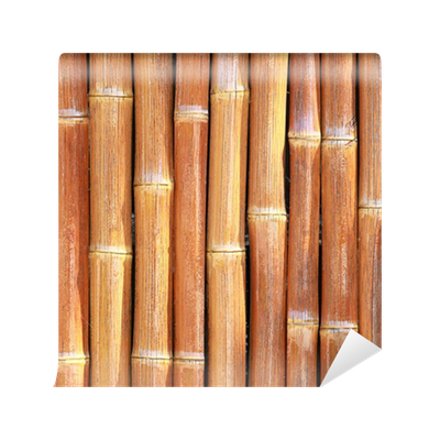 Bamboo Sticks Wall Mural Pixers 174 We Live To Change