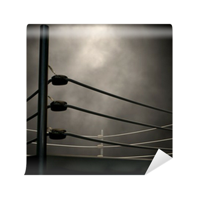 Classic Vintage Boxing Ring Wall Mural • Pixers® • We live ...