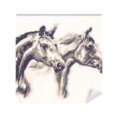 Freehand Horse Head Pencil Drawing Wall Mural Pixers We Live To Change