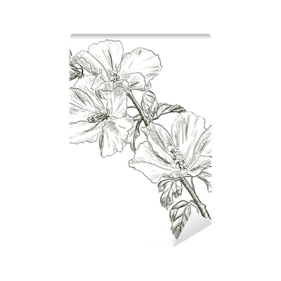 Hand Drawing Hibiscus Flower Wall Mural Pixers We Live To Change
