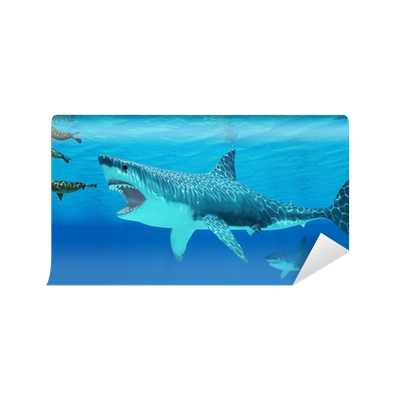 Megalodon attacks a Seal Wall Mural • Pixers® - We live to change