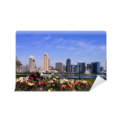 San Diego Skyline By Day Wall Mural O PixersR We Live To Change