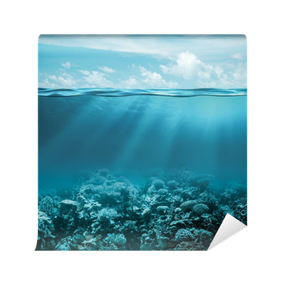 Sea Or Ocean Underwater Deep Nature Background Wall Mural