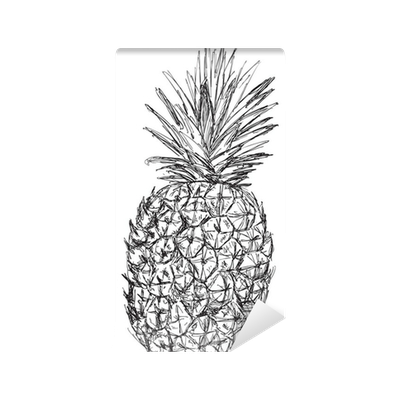 Single Pineapple Sketch Isolated On White Wall Mural Pixers We Live To Change