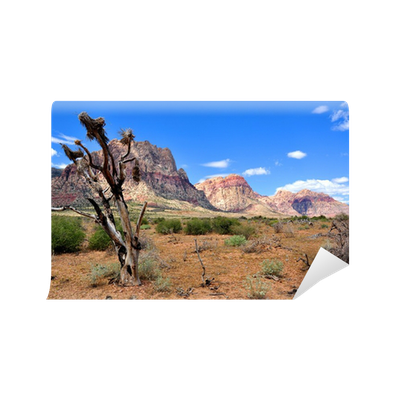southwest desert wall mural • pixers® - we live to change