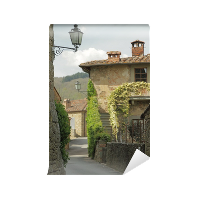 street in tuscan small town, Volpaia Wall Mural • Pixers® • We live to  change