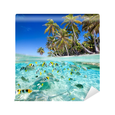Tropical Island Above And Underwater Wall Mural Pixers