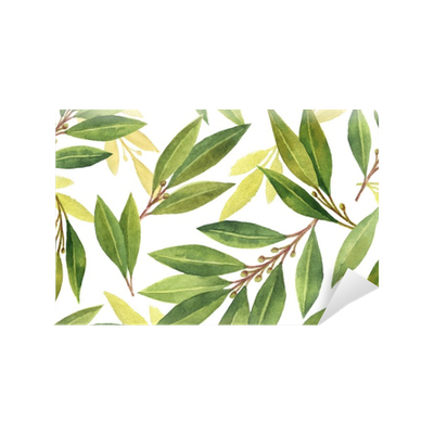 Watercolor Bay leaf seamless pattern of flowers and leaves isolated on white background. Vinyl Wall Mural