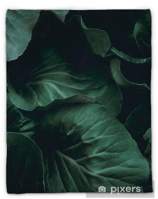 Koc pluszowy Tło roślin - Zasoby graficzne