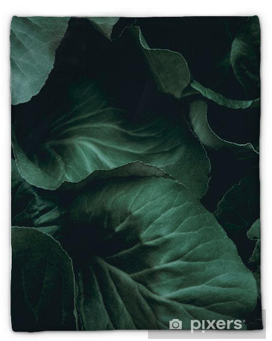 Plant background Plush Blanket - Graphic Resources